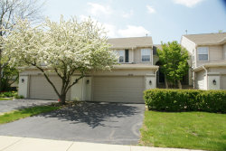 Photo of 2452 Palazzo Court, Unit Number 2452, BUFFALO GROVE, IL 60089 (MLS # 10387619)
