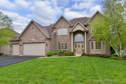 Photo of 143 Pineridge Drive S, OSWEGO, IL 60543 (MLS # 10389053)
