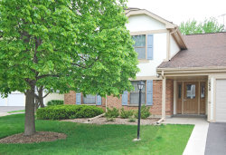 Photo of 1050 Driftwood Court, Unit Number D1, WHEELING, IL 60090 (MLS # 10389709)