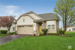 Photo of 806 Colchester Drive, OSWEGO, IL 60543 (MLS # 10389844)
