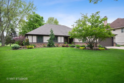 Photo of 852 W Bauer Road, NAPERVILLE, IL 60563 (MLS # 10389905)