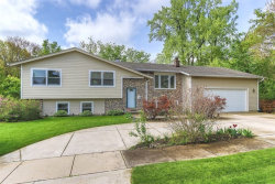Photo of 113 Claria Drive, ROSELLE, IL 60172 (MLS # 10391278)