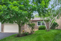 Photo of 237 S Park Place Drive, BARTLETT, IL 60103 (MLS # 10399764)