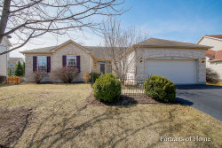 Photo of 811 Columbus Drive, OSWEGO, IL 60543 (MLS # 10403218)
