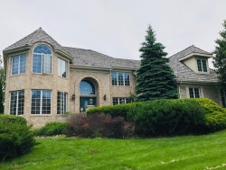 Photo of 10606 Misty Hill Road, ORLAND PARK, IL 60462 (MLS # 10403742)