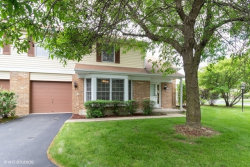 Photo of 10033 Cambridge Court, MOKENA, IL 60448 (MLS # 10407159)