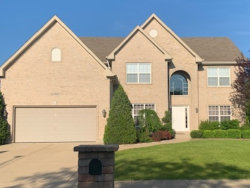 Photo of 25903 Meadowland Circle, PLAINFIELD, IL 60585 (MLS # 10409124)