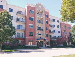 Photo of 14 S Prospect Street, Unit Number 201, ROSELLE, IL 60172 (MLS # 10411475)