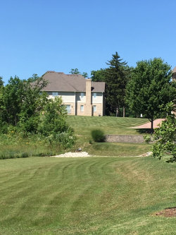 Tiny photo for 1225 Arnold (lot 3) Court, DOWNERS GROVE, IL 60516 (MLS # 10411992)