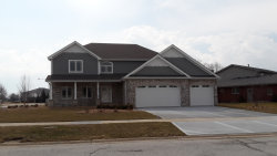 Photo of 10711 Crystal Creek Drive, MOKENA, IL 60448 (MLS # 10412276)