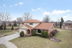 Photo of 14209 Meadowview Court, ORLAND PARK, IL 60462 (MLS # 10412977)