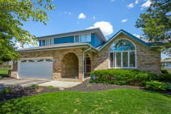 Photo of 18929 Creekview Lane, MOKENA, IL 60448 (MLS # 10414863)