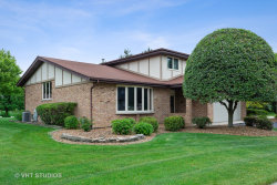 Photo of 14628 Middle Pinecreek Drive, ORLAND PARK, IL 60467 (MLS # 10415617)