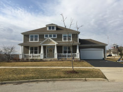 Photo of 265 Tumbleweed Way, ELGIN, IL 60124 (MLS # 10416526)