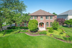 Photo of 14350 Wooded Path Lane, ORLAND PARK, IL 60462 (MLS # 10417352)