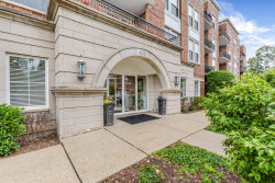 Photo of 435 W Wood Street, Unit Number 209A, PALATINE, IL 60067 (MLS # 10418119)