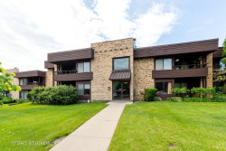 Photo of 1411 N Sterling Avenue, Unit Number 204, PALATINE, IL 60067 (MLS # 10418225)
