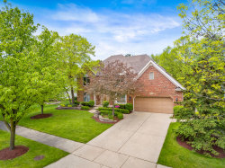 Photo of 919 Rock Spring Road, NAPERVILLE, IL 60565 (MLS # 10419150)