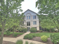 Photo of 6855 Forestview Drive, Unit Number 3B, OAK FOREST, IL 60452 (MLS # 10421724)