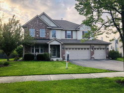 Photo of 26216 Mapleview Drive, PLAINFIELD, IL 60585 (MLS # 10426705)