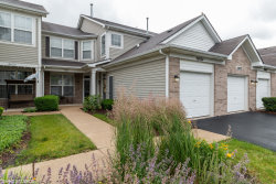 Photo of 24024 Pear Tree Circle, PLAINFIELD, IL 60585 (MLS # 10428727)