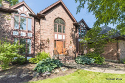 Photo of 470 Cranesbill Drive, WEST CHICAGO, IL 60185 (MLS # 10440181)