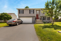 Photo of 212 Inverness Trail, MCHENRY, IL 60050 (MLS # 10447427)