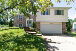 Photo of 102 Asheville Court, VERNON HILLS, IL 60061 (MLS # 10451361)