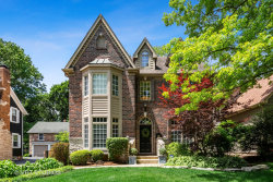 Photo of 355 S Columbia Street, NAPERVILLE, IL 60540 (MLS # 10453512)