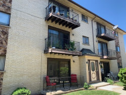 Photo of 8518 W Catherine Avenue, Unit Number 1S, CHICAGO, IL 60656 (MLS # 10461368)