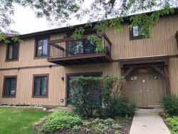 Photo of 1115 Prescott Drive, Unit Number 506, ROSELLE, IL 60172 (MLS # 10477833)