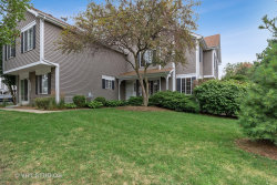 Photo of 1333 Lowell Drive, Unit Number 1333, SOUTH ELGIN, IL 60177 (MLS # 10478014)
