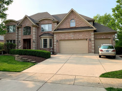 Photo of 2493 Bird Lane, BATAVIA, IL 60510 (MLS # 10478746)