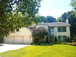 Photo of 712 Catino Court, ROSELLE, IL 60172 (MLS # 10479950)