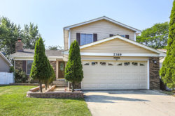 Photo of 2369 Vista Drive, WOODRIDGE, IL 60517 (MLS # 10482109)