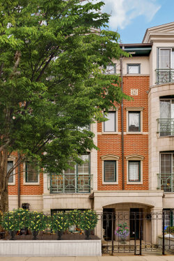 Photo of 1413 S Prairie Avenue, CHICAGO, IL 60605 (MLS # 10486828)