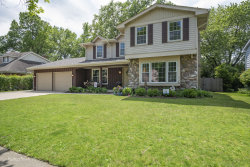Photo of 1336 Wessling Drive, NORTHBROOK, IL 60062 (MLS # 10488334)