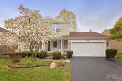 Photo of 260 N Fiore Parkway, VERNON HILLS, IL 60061 (MLS # 10491754)