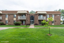 Photo of 461 N Jonathan Drive, Unit Number 101, PALATINE, IL 60074 (MLS # 10492605)