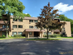 Photo of 2604 N Windsor Drive, Unit Number 203, ARLINGTON HEIGHTS, IL 60004 (MLS # 10493026)