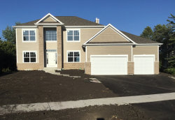 Photo of 16645 Silver Creek Court, PLAINFIELD, IL 60586 (MLS # 10493765)