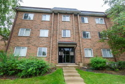 Photo of 909 Buccaneer Drive, Unit Number 24-02, SCHAUMBURG, IL 60173 (MLS # 10494122)