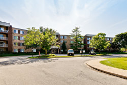 Photo of 245 S Park Lane, Unit Number 314, PALATINE, IL 60074 (MLS # 10494243)