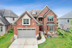 Photo of 16810 Sheridans Trail, ORLAND PARK, IL 60467 (MLS # 10494803)