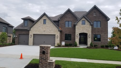 Photo of 17009 Sheridans Trail, ORLAND PARK, IL 60467 (MLS # 10495259)
