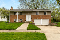 Photo of 1315 E Sanborn Drive, PALATINE, IL 60074 (MLS # 10495468)