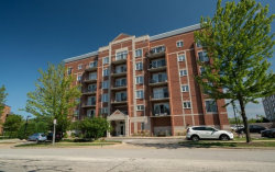 Photo of 405 S Creekside Drive, Unit Number 206, PALATINE, IL 60074 (MLS # 10496018)