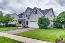 Photo of 319 Mustang Drive, OSWEGO, IL 60543 (MLS # 10504827)