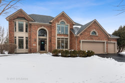 Photo of 1410 Fairway Circle, Geneva, IL 60134 (MLS # 10510897)