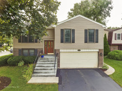 Photo of 650 Rodenburg Road, ROSELLE, IL 60172 (MLS # 10514419)
